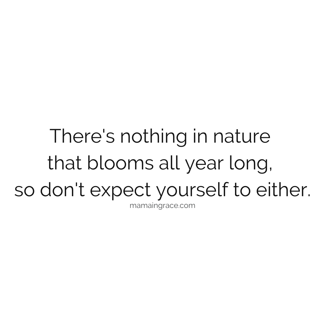 nothing in nature blooms all year long